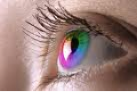 Coloured_contact_lens