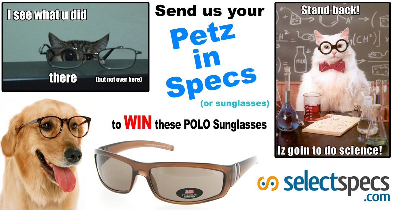 Pets in Specs