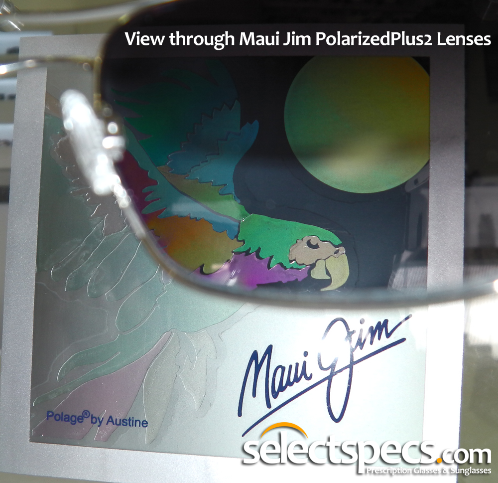 View Through Maui Jim Lenses - SelectSpecs