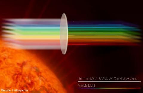 Choose Lenses that block UV Rays