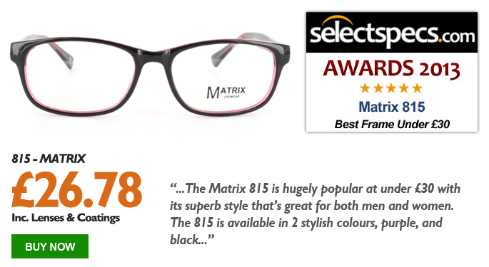 SelectSpecs.com Glasses of the Year 2013 - Under £30 - Matrix - 815