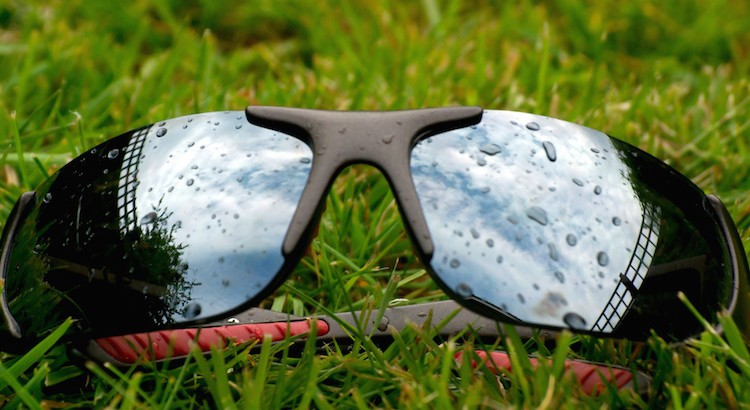Wet Sunglasses on Grass