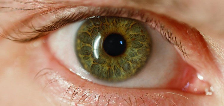Blind Man Sees Using Bionic Eye