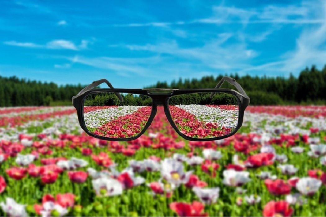 Die besten Damen-Brillen für Aktivitäten im Freien