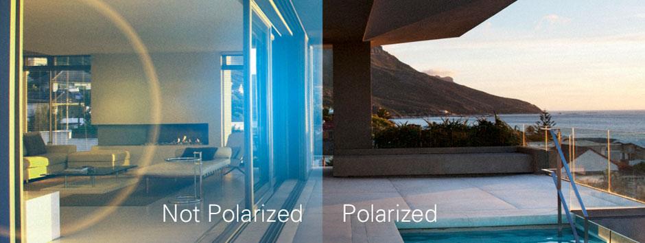 Polaroid's Polarized Summer