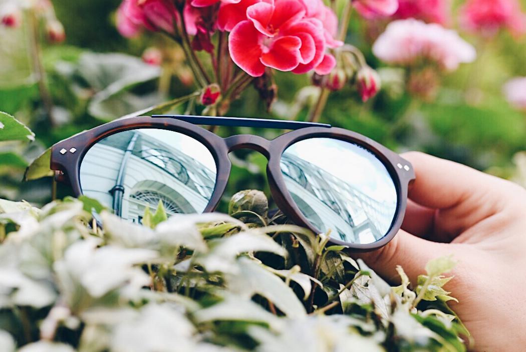 4f0780c924 Polaroid Sunglasses  Brand We Adore