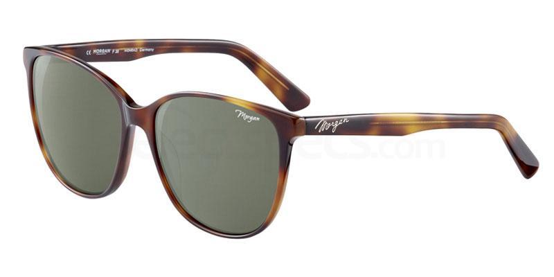 morgan eyewear 207195 havana glasses