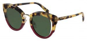 Tortoise sunglasses SF