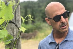 Stanley Tucci: Steal His Eyewear Style